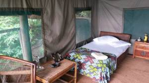 Tent Domwe Island