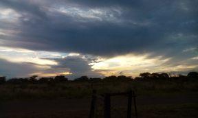 Sunset after first rain